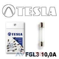 Предохранитель Tesla FGL310A.10