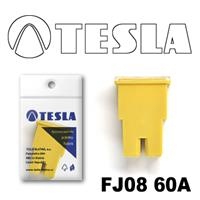 Предохранитель Tesla FJ0860A
