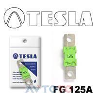 Предохранитель Tesla FG125A