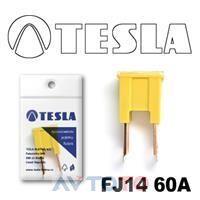 Предохранитель Tesla FJ1460A