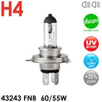 Лампа Celen 43243FNB