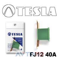 Предохранитель Tesla FJ1240A