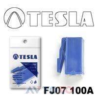 Предохранитель Tesla FJ07100A