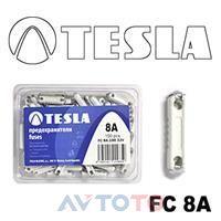 Предохранитель Tesla FC8A.100
