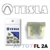 Предохранитель Tesla FL2A.10