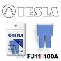 Предохранитель Tesla FJ11100A