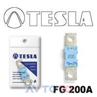 Предохранитель Tesla FG200A