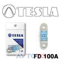 Предохранитель Tesla FD100A