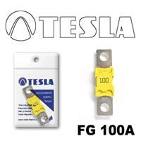 Предохранитель Tesla FG100A