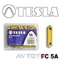 Предохранитель Tesla FC5A.100