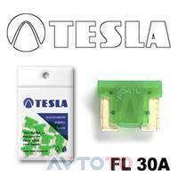 Предохранитель Tesla FL30A.10