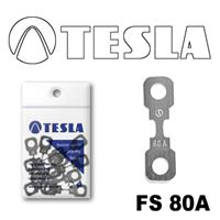 Предохранитель Tesla FS80A.10
