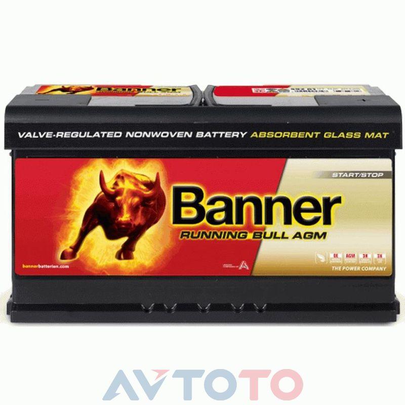 Аккумулятор Banner 59201