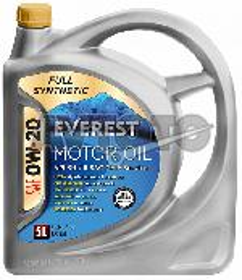 Моторное масло EVEREST FP02000EV05LFS