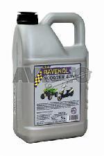 Моторное масло Ravenol 4014835102958