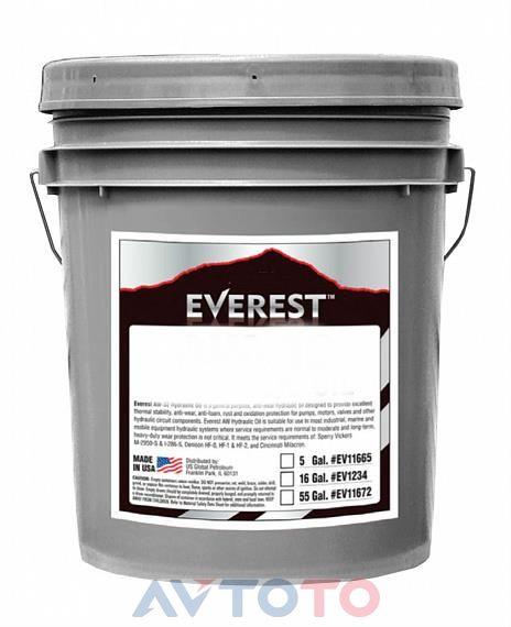 Моторное масло EVEREST FP10400EV19LCB