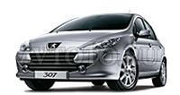 Автозапчасти Peugeot (04-07)