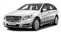 Автозапчасти Mercedes-Benz W251 (06-10)